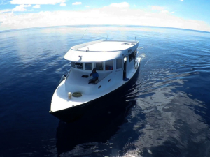 Mobula Diving Dhoni - Manta Cruise Liveaboard