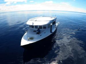Mobula Diving Dhoni - Manta Cruise Liveaboard